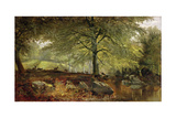 Deer in a Wood Giclee Print by Joseph Adam