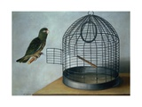 Parrot Outside His Cage Giclee Print by Cornelis Biltius