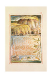 The Clod and the Pebble: Plate 32 from Songs of Innocence and of Experience C.1815-26 Giclée-Druck von William Blake