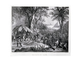 T1243 the Coffee Harvest, Engraved by Deroi, Pub. by Engelmann, C.1835 Giclee Print by Johann Moritz Rugendas