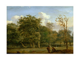 A Wooded Landscape with Figures, C.1668-72 Giclée-Druck von Jan Van Der Heyden