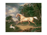 A Palomino Frightened by an Oncoming Storm with a Spaniel, 1814 Giclee Print by Charles Towne