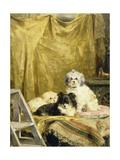 Three Dogs Giclée-Druck von Charles Van Den Eycken