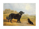 Dogs Giclee Print by Loey Campbell