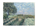 The Market Gardens, 1874 Giclee Print by Alfred Sisley