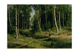 In the Birch Tree Forest, 1883 Giclee Print by Ivan Ivanovich Shishkin