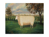 A Prize Sheep of the Old Lincoln Breed, 1835 Giclee Print by W. Adamson
