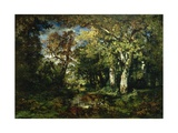 The Forest at Fontainebleau, 1870 Giclee Print by Narcisse Virgile Diaz de la Pena