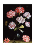 Floral Study: Carnations in a Vase Giclee Print by Balthasar van der Ast