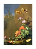 Still Life of Forest Floor with Flowers, Mushrooms and Snails Giclee Print by Elias Van Den Broeck