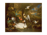 A Brace of Mallard, a Duck, a Curlew and a Snipe Giclee Print by Adriaen van Oolen