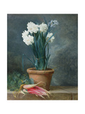 Still Life of Narcissi in a Terracotta Pot Giclee Print by Guillaume-Thomas-Raphael Taraval