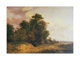 Landscape Scene in Norfolk Giclee Print by John Crome