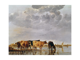 Cows in a River, C.1650 Giclee Print by Aelbert Cuyp