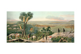Panoramic View of King George's Sound, Part of the Colony of Swan River, Engraved by Robert… Giclee Print by R. Dale