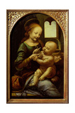 Madonna with a Flower, or Madonna Benois, C.1478 Giclee Print by  Leonardo da Vinci