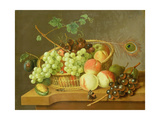 Still Life of Grapes and Peaches in a Basket Giclee Print by Pieter Gerardus van Os