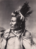 'Old Brass', a Native North American, 19th Century Fotografisk tryk