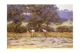 The Mowers Giclee Print by Helen Allingham