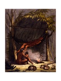 Native American Family under a Leaf Shelter Giclee Print by Gallo Gallina