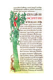 Ms 173 F.41 Historiated Initial 'I' Depicting a Monk and a Lay Chopping and Pruning a Tree, from… Giclee Print
