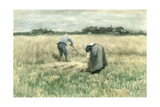 The Harvest Giclee Print by Anton Mauve