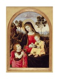Virgin and Child with St. John the Baptist, 1490-95 Giclee Print by Bernardino di Betto Pinturicchio
