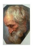 Head of an Apostle Giclee Print by Gaspar de Crayer