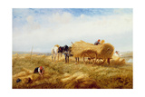 Harvesting, Near Boulogne-Sur-Mer Giclee Print by Richard Beavis