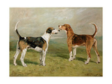 Two Hounds in a Landscape Giclee Print by John Emms