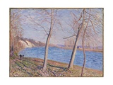 The Banks of the River at Veneux, 1881 Giclee Print by Alfred Sisley