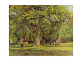 The Forest, 1870 Giclee Print by Camille Pissarro