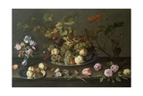 Still Life of Fruit, Flowers and Shells Giclee Print by Balthasar van der Ast