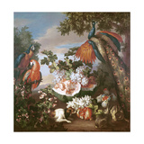 Fruit and Exotic Birds in a Landscape Reproduction procédé giclée par Jean-Baptiste Monnoyer