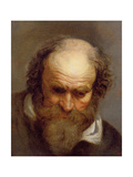 Head of an Old Man Giclee Print by Jacob Jordaens