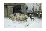 Sheep on a Winter's Morning Giclee Print by Francois Pieter Ter Meulen