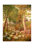 Landscape with Sheep Giclee Print by Charles Jones