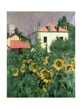 Sunflowers in the Garden at Petit Gennevilliers Giclee Print by Gustave Caillebotte