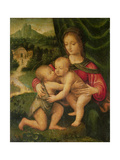 Madonna and Child with St. John Giclee Print by Bernardino Luini