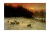 Sheep in a Winter Landscape, Evening Giclée-Druck von Joseph Farquharson