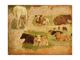 Study of Cows, C.1860 Giclee Print by Eugène Boudin