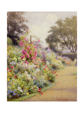 An Herbaceous Border Giclee Print by Harry E. James