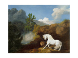 A Horse Frightened by a Lion, 1770 Giclee Print by George Stubbs