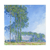 Poplars, 1891 Giclee Print by Claude Monet