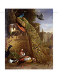 Peacock and a Peahen on a Plinth, with Ducks and Other Birds in a Park Giclee Print by Melchior de Hondecoeter