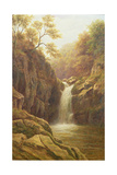 Pecca Foss Giclee Print by William Mellor
