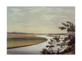 The River Murray, Near Lake Alexandrina, Australia Giclee Print by George French Angas