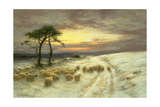 Sheep in the Snow Giclee Print by Joseph Farquharson