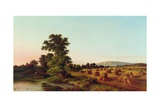 A Surrey Cornfield, 1865 Giclee Print by Walter Williams