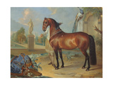 The Bay Horse' Sincero' Giclee Print by Johann Georg Hamilton